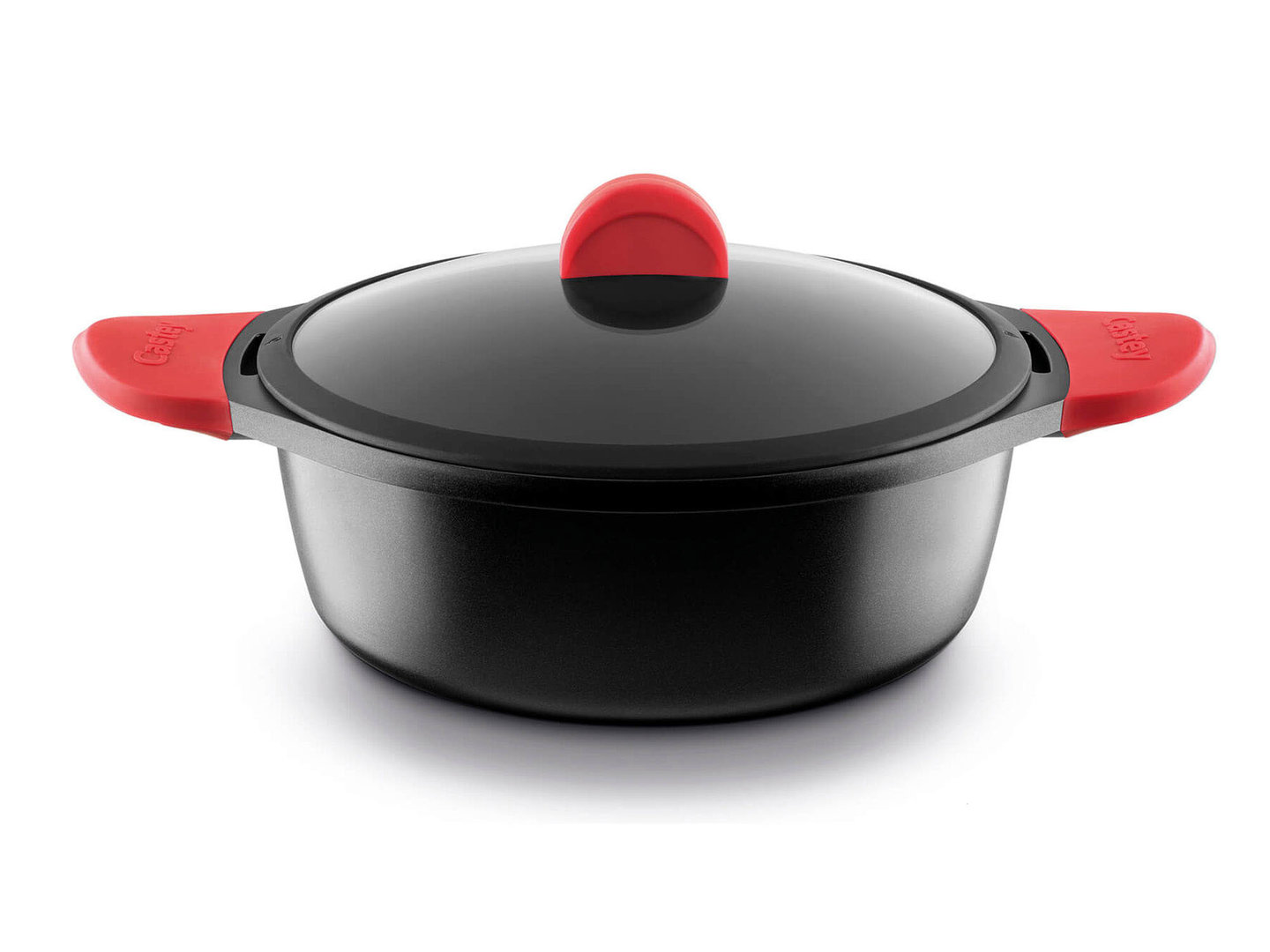CASTEY cast aluminum casserole 24 cm with lid silicone handles induction